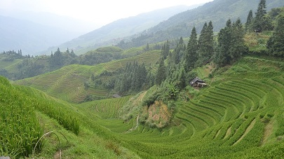 Private tour and car in Longsheng